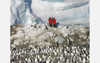 Photo of researchers and emperor penguins.