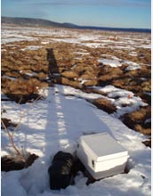Photo of the Alaskan permafrost research site.