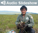 Photo of researcher in a field and the words Audio Slideshow