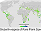 global hotspots of rare plant species
