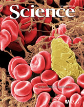 Cover of the February 10, 2012 issue of the journal Science.