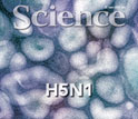 Cover of the June 22, 2012 issue of the journal Science.