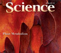 Cover of the June 29, 2012 issue of the journal Science.