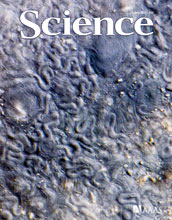 Cover of the July 1, 2011 issue of the journal Science.