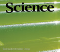 Cover of the August 13, 2010 issue of the journal Science.