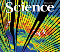 Cover of the October 22, 2010 issue of the journal Science.