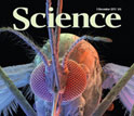 Cover of the December 9, 2011 issue of the journal Science.