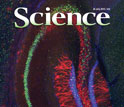 cover of journal Science july 27 2013