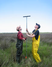 Photo of Andrew Kemp in red and Simon Engelhart in yellow collecting sediment cores.