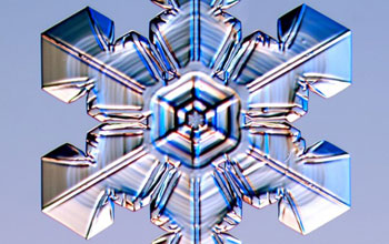 Image of a stellar plate snow crystal with ridges pointing to corners between adjacent prism facets.
