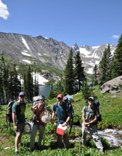 Photo of Chris Funk, Rachel Harrington, Brian Gill and Dave Martin collecting samples in Colorado.