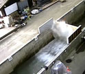 A tsunami generated by a piston wavemaker travels across a flume, breaks and collapses a wall.