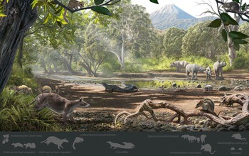 Reconstruction of the Eocene paleoenvironment of the Pontide terrane in Turkey, where the new marsupial fossils were found.