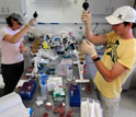 Researchers at Mote Marine Laboratory.