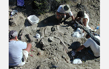 Photo of researchers digging for fossils in Grand Staircase-Escalante National Monument, Utah.