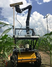 A mobile sensor tower and robot vehicle take 3-D images of corn plants.