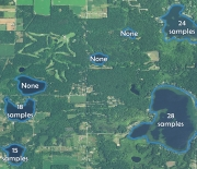 The number of water quality observations in the LAGOS database for lakes near Pierson, Michigan.
