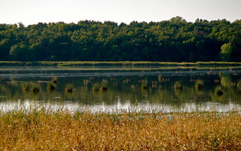 A dot on a map of the United States, Cherokee Marsh in Wisconsin is central to the Yahara watershed.