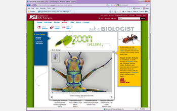 Interactive Zoom Gallery tool on the Ask a Biologist website.