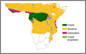 African deforestation map