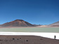 The Altiplano-Puna plateau in the central Andes