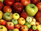 image of various apples