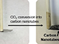 small diameter carbon nanotubes grown on a stainless steel surface