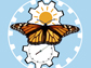 monarch brain integrates the time of day