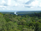 view of Panama's rainforest canopy