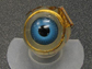 model of the retinal implant