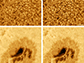 images taken from Big Bear Solar Observatory of a massive section of the Sun's surface