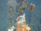 floating pill bottles around hydrothermal vents