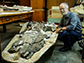 Professor Ewan Fordyce and the 34 million-year-old whale fossil
