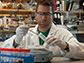 Zachary Charlop-Powers examine DNA from soil samples