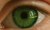 close-up photo of green, human eye